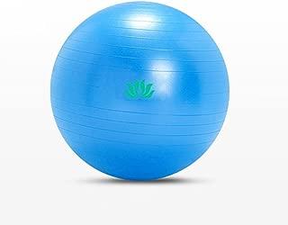 QCRLB Yoga Ball, Gym Ball Thicken Explosion-Proof Pregnant Women Childbirth Ball Environmental Protection Sports Balls (Color : #1)
