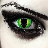 """Designlenses, Dos lentillas de colores verde para Halloween costume ojo de gato/dragón lentes verdes sin dioprtías/corregir + gratis caso de lente """"Green Dragon'"""