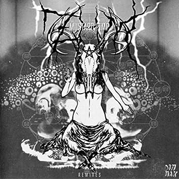 ZHM (Remixes)