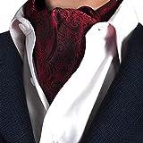 STTLZMC Herren Krawattenschal Ascotkrawatte Schal Fashion Gentleman Cravat Ties,color 11,One Size