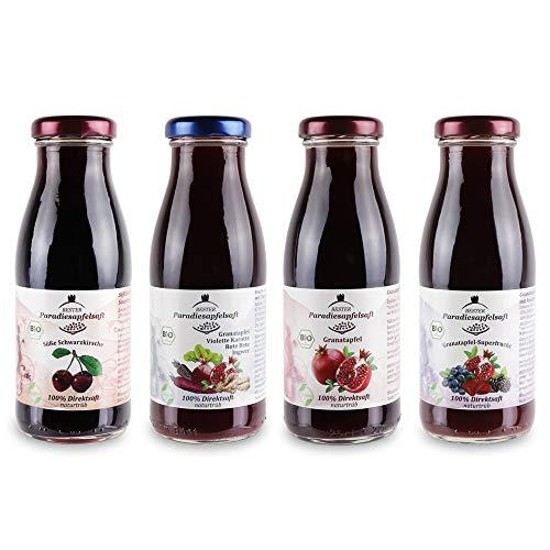 Paradiesapfel-Mix 100% Bio-Direktsaft (naturtrüb) - 12 x 250 ml