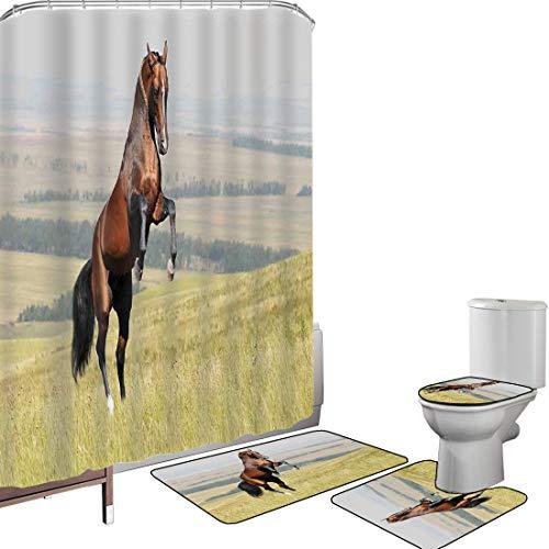 Ensemble de rideau douche Accessoires salleLes chevaux Couverture toilette pour tapis bain Baie Akhal Teke,étalon de cheval,élevage sur le terrain,noble mammifère extérieur,pastorale,vert brun Antidér