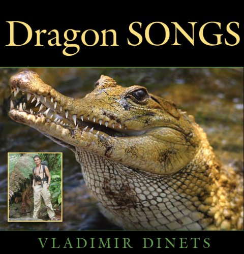 Dragon Songs audiobook cover art
