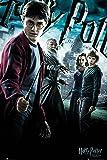 Harry Potter 6Main Maxi Poster, 61x 91,5cm