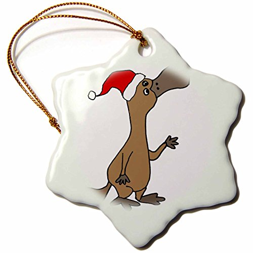 3dRose Hilarious Cute Duckbilled Platypus in Santa Hat Christmas Art Snowflake Ornament, 3'