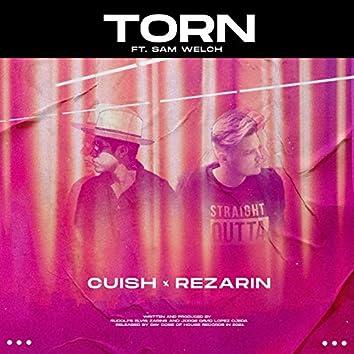 Torn (feat. Sam Welch)