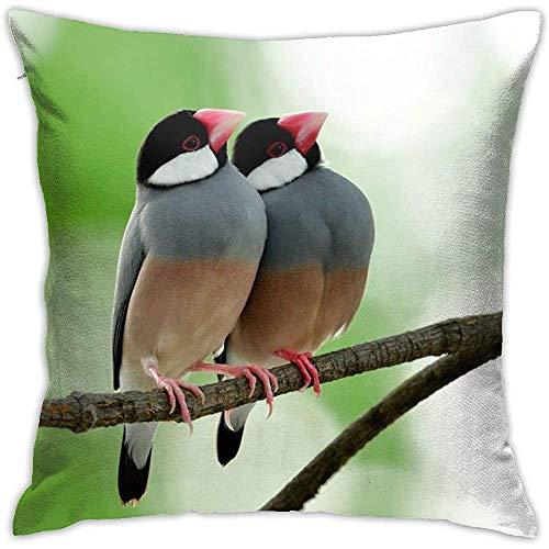 July kussensloop met grijze vogels, vierkant kussenovertrek voor sofa, slaapkamer, auto, stoel, huis, party