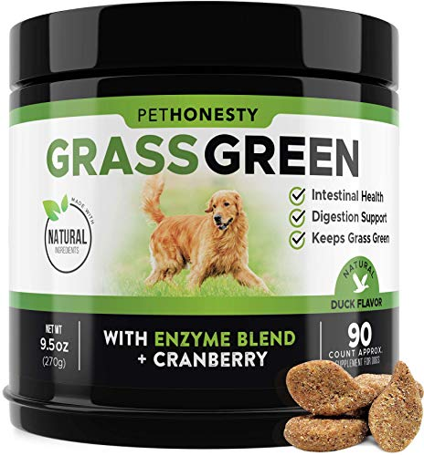 PetHonesty GrassGreen Grass Burn Spot Chews for Dogs - Dog Pee Lawn Spot Saver Treatment Caused by Dog Urine - Cranberry, Apple Cider Vinegar, DL-Methionine Grass Treatment Rocks - 90 Chew Treats