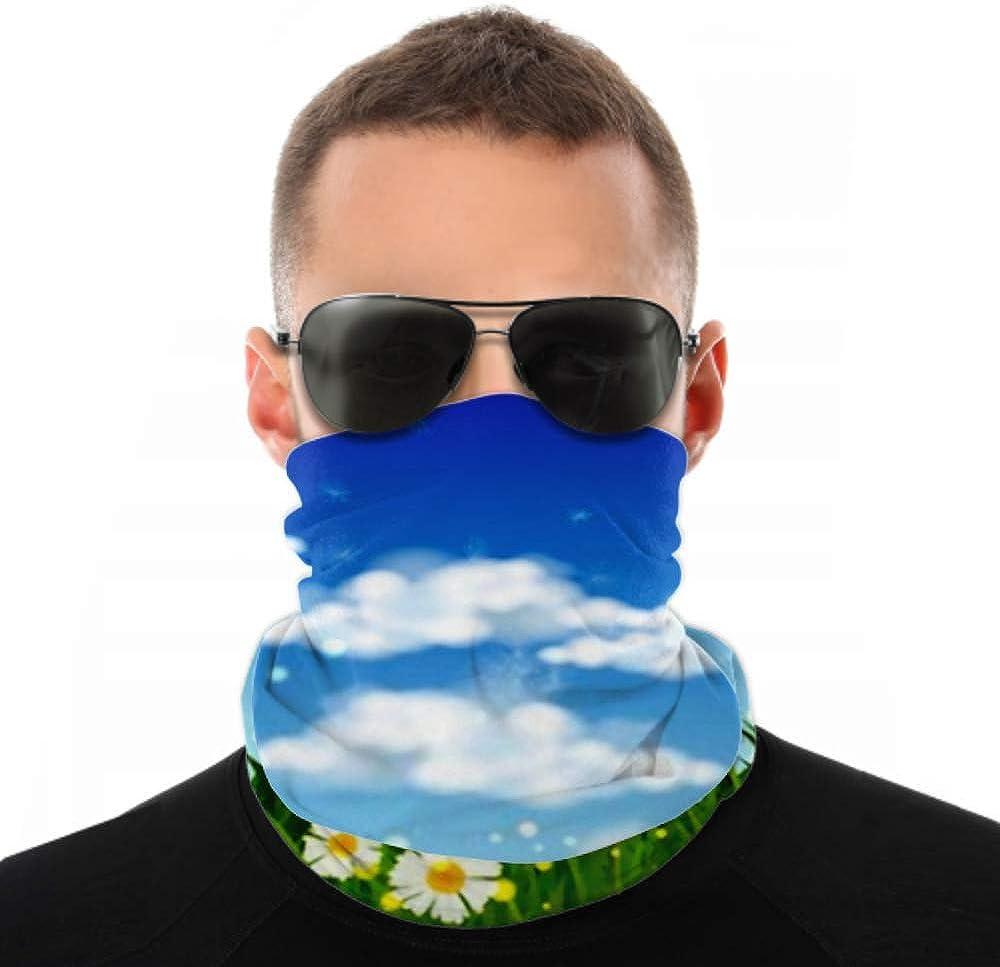 Headbands For Men Women Neck Gaiter, Face Mask, Headband, Scarf Blowball Dandelion White Daisy On Green Turban Multi Scarf Double Sided Print Athletic Headbands For Sport Outdoor