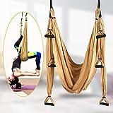 TTLIFE Aerial Yoga Amaca Aerial Yoga Swing Set Antigravity Yoga Hammock Yoga Amaca Altalena Amaca per Pilates Ginnastica Moschettone con Bordi Lisci,per Migliore Flessibilità & Core Strength (Giallo)