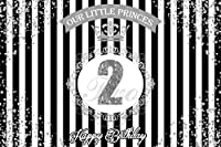 APAN10x7ft Vinyl Baby 2nd Happy BirtAPANay Backdrops for Photography Our Little Princess BirtAPANay Party Cake Table Banner Photography Background Kids Girls Portrait Wallpaper Photo Booth Studio Props