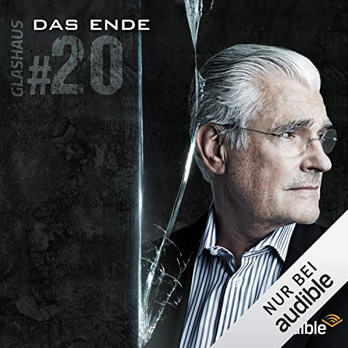 Das Ende audiobook cover art