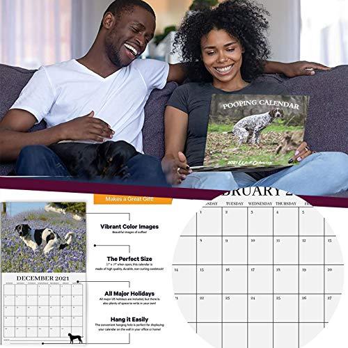 Calendario de pared 2021 – Perros que hacen Caca, calendario de pared mensual 2021, 12 meses de enero de 2021 a diciembre de 2021 (multicolor)