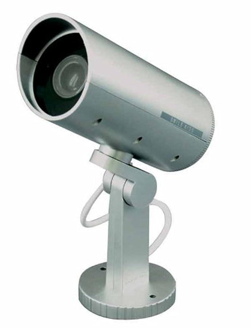 怠惰ラインベッツィトロットウッドスマイルキッズ 防雨 防犯ダミーカメラ ADC-205