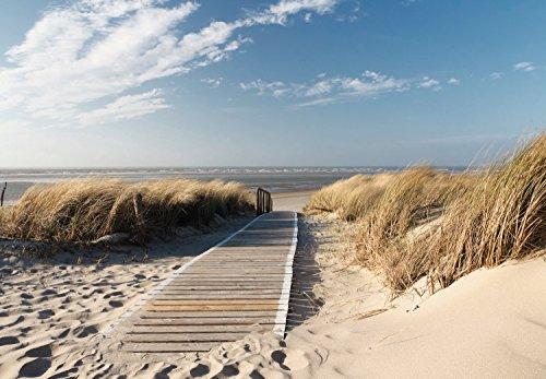 Fototapete Meer 366cm x 254cm inklusive Kleister Meer Strand Sonne Dünen Steg Ocean Way Weg Ostsee Nordsee Tapete