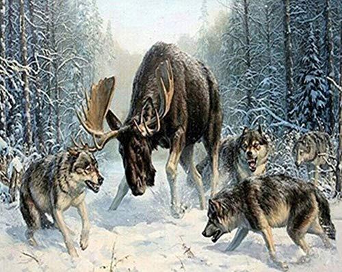 Pintar por números - Lobo, Alce Animal, Bosque nevado - Artesanía en Kit para Pintura al óleo sobre Lienzo. - para la decoración de la Pared del hogar - 40x50cm - Sin Marco