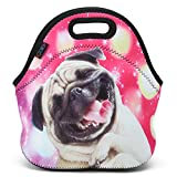 ICOLOR Funny Dog Soft Insulated Lunch box Food Bag Neoprene Gourmet Handbag lunchbox Cooler warm Pouch Tote bag For School work LB-054