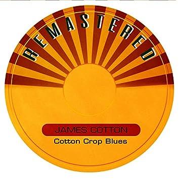 Cotton Crop Blues (Remastered)