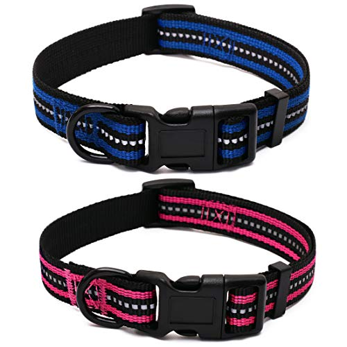 Mile High Life Night reflektierende Doppelstreifen Nylon Hundehalsband (2 Pack blau/helles Rosa, X-Kleiner Hals 23cm - 33cm - 9kg)