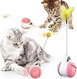 FGen Juguete de Gato Interactivo, Juguetes para Gatos con Bola giratoria automática, Juguete Interactivo para Gatos, Juguete para Gatos Rodante con Bola de Hierba Gatera y Plumas (Rosa)