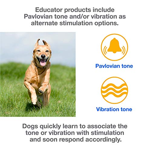 Educator ET-300 Mini Vibrating E-Collar Remote Training Collar With Vibration