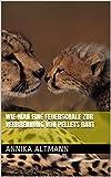 Wie man eine Feuerschale zur Verbrennung von Pellets baut (German Edition)