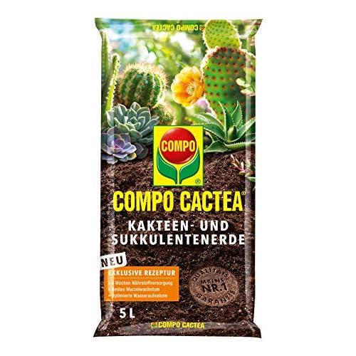 Compo 1122102004 Cactéa Cactus e Sukkulentenerde, 5L