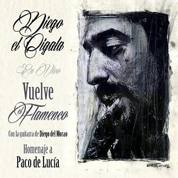 Vuelve el Flameco: Homenaje a Paco de Lucía