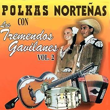 Polkas Nortenas, Vol. 2