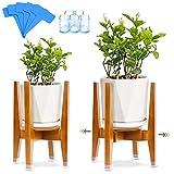 Soporte para Plantas, Soporte de Plantas Expandible, 5 Alfombrilla Antideslizante , 5...
