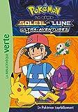 Pokémon Soleil et Lune 16 - Un Pokémon tourbillonnant