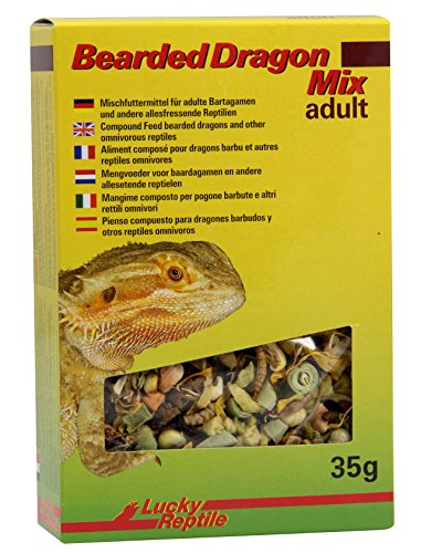 Lucky Reptile Bearded Dragon Mix Adult 35 g, 1er Pack (1 x 35 g)
