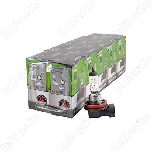 10 ampoules halogènes Lampe Blanc Ampoules H11 24 V 70 W Culot pgj19–2 Feux de croisement Feu antibrouillard Neu VKD Lima 11