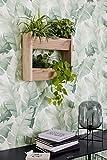 Papel Pintado Pared Blanco Verde Morderno Floral, Hojas, Plantas Domitorio, Salón y Cocina Fabricado en Alemania 10,05 x 0,53m Avalon 31650