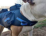 Full Body Weighted Dog Vest Weights On All 4 Legs More Effective -Builds Strength and Improves Overall Health - Reflective (Large Vest: 15lbs. and 30lbs. BB's, Blue Strap)