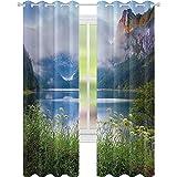 Cortinas térmicas con aislamiento, lago nebuloso de la montaña de los Alpes en el prado floral, aventura pastoral imagen de escalada, 52 x 84 cortinas opacas para sala de estar, azul helecho verde