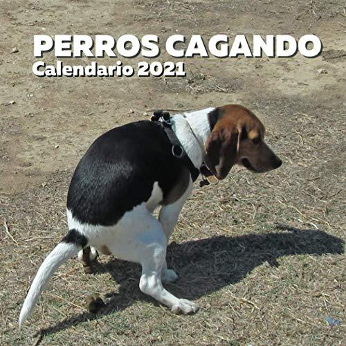 Perros Cagando Calendario 2021: Regalos Gracioso Para Amantes de los Perros | Divertidos Para Amigos, Mujer, Hombre, Adolescentes, Adultos, Cumpleaños, Navidad