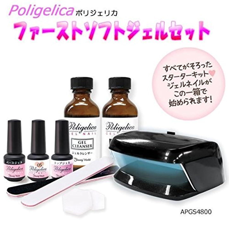 剣共和党表向きビューティーワールド ポリジェリカ Poligelica LEDミニライト付 ファーストソフトジェルセット APGS4800
