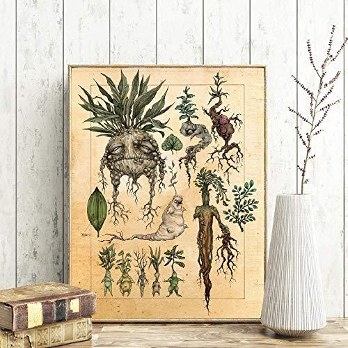WJWGP Weinlese Pflanze Illustration GemäLdeplakat Nette Mandrake Pflanze Wand Bilder Dekor Bild Botanische Wandbild Klassisches Filmplakat Kinderzimmer Dekor Poster
