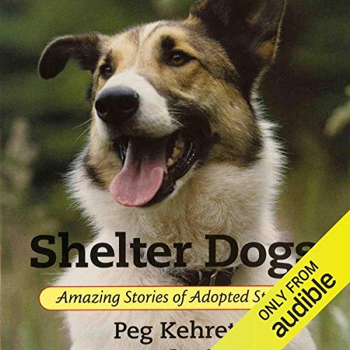 Couverture de Shelter Dogs