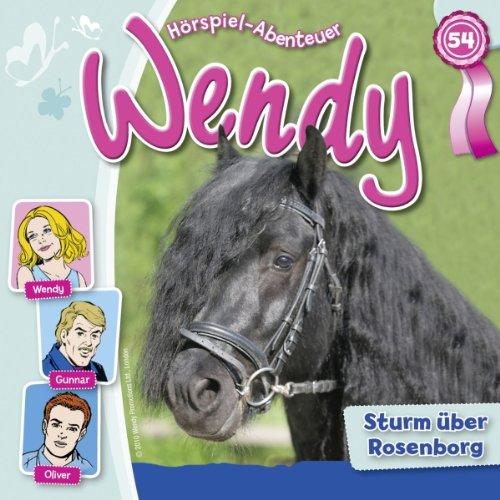 Sturm über Rosenborg audiobook cover art