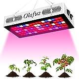 Olafus LED Grow Light for Indoor Plants 300W(80pcs 10W LEDs), Full Spectrum Grow Lamp, Veg and Bloom Dual Mode, Similar Sun Light IR UV Plant Growing Lights for Seeding Vegetable Flower
