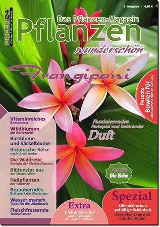 GREEN24 Pflanzen wunderschön - Ausgabe 6 - Sommer - gedruckte Ausgabe als seltenes Sammlerstück aus unserem Archiv.