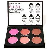 1pc City Color Glow Pro Blush Palette Matte Collection #C0012A (Matte)