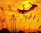 ChenKeai Pintura Digital para Adultos Niños Sunset Animales Adultos y niños Pintura Digital DIY Pintura al óleo Set de Regalo Lienzo Artista Decoración del hogar-with Frame-40x50cm