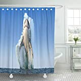 QIUJUAN Duschvorhang, Waterproof Decorative Bathroom 72 x 72 inches Blue White Shark Jumps Out of The Water Great Attack Ocean Underwater Fish Splash Polyester Fabric Set with Hooks
