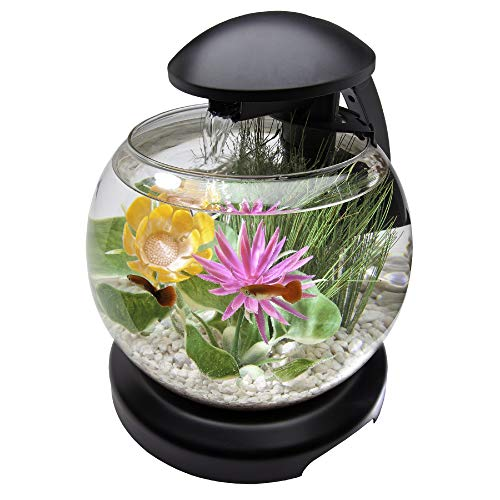 Tetra Waterfall Globe Kit 1.8 Gallons, Aquarium With Filtration