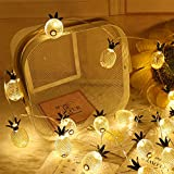FeiliandaJJ 10LED Lichterkette Led Lichter Innen Kinderzimmer Metall Ananas-Form Deko Lichterketten...