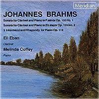 Brahms:Sonata in FM