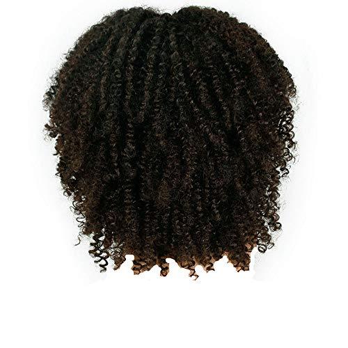 FAMILIZO Pelucas Mujer Pelo Natural Largo Corto Postizos De Pelo Natural Hombres Pelucas Sintéticas Rizado Marrón Para Mujeres Corto Afro Peluca Afroamericana Natural